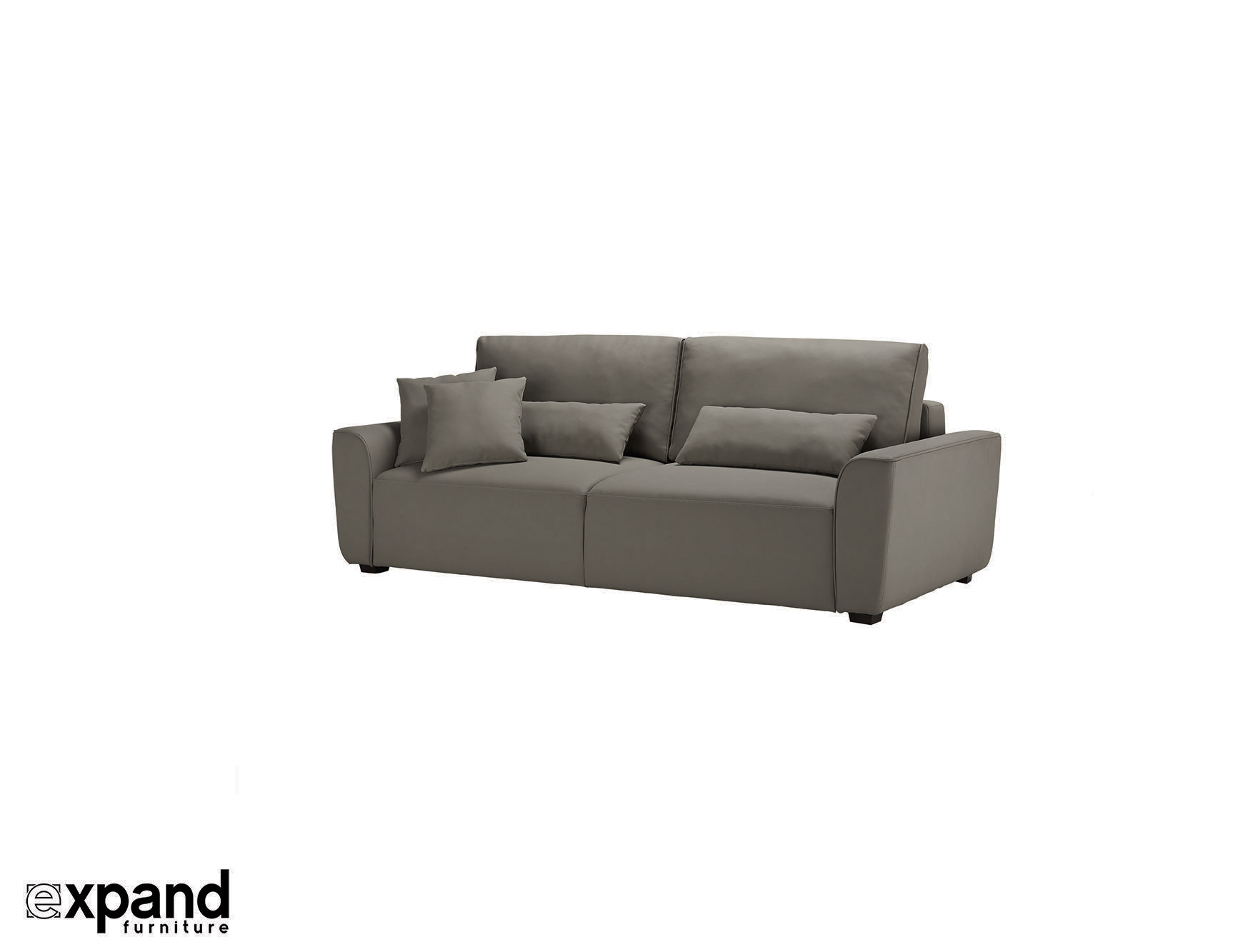Cloud modern queen sofa bed sleeper expand furniture for Sectional sleeper sofa with queen bed